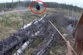 Caçador é atacado por urso no Canadá e grava momento de terror; veja vídeo