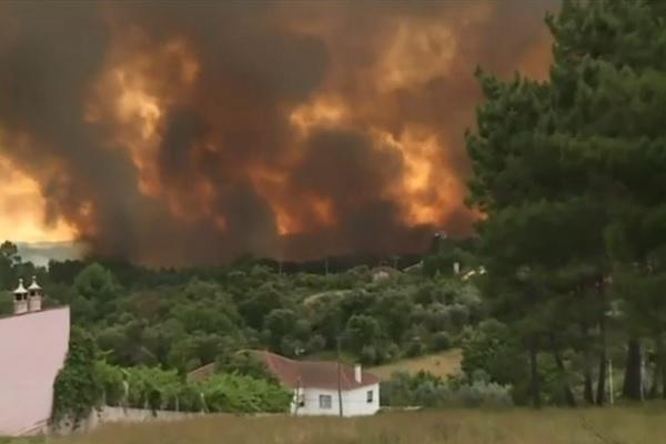 Incêndio florestal deixa 57 mortos em Portugal