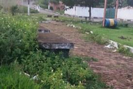 Comunidade de Vila Nova de Portão solicita atuação da Sesp: muito mato. Veja