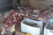 Operação apreende 1,5 tonelada de carne adulterada na Bahia; carga era transportada para Salvador