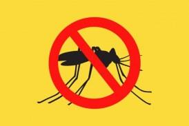 Estado lança Campanha de Vacinação contra febre amarela em Lauro de Freitas