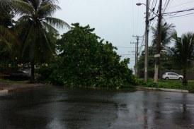 Chuvas colocam equipes da Defesa Civil de Lauro de Freitas em alerta